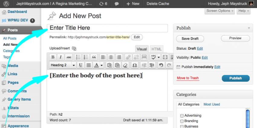 Enter the title and body of your post - wordpress - screen shot