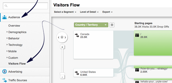 How to find visitor flow in Google Analytics