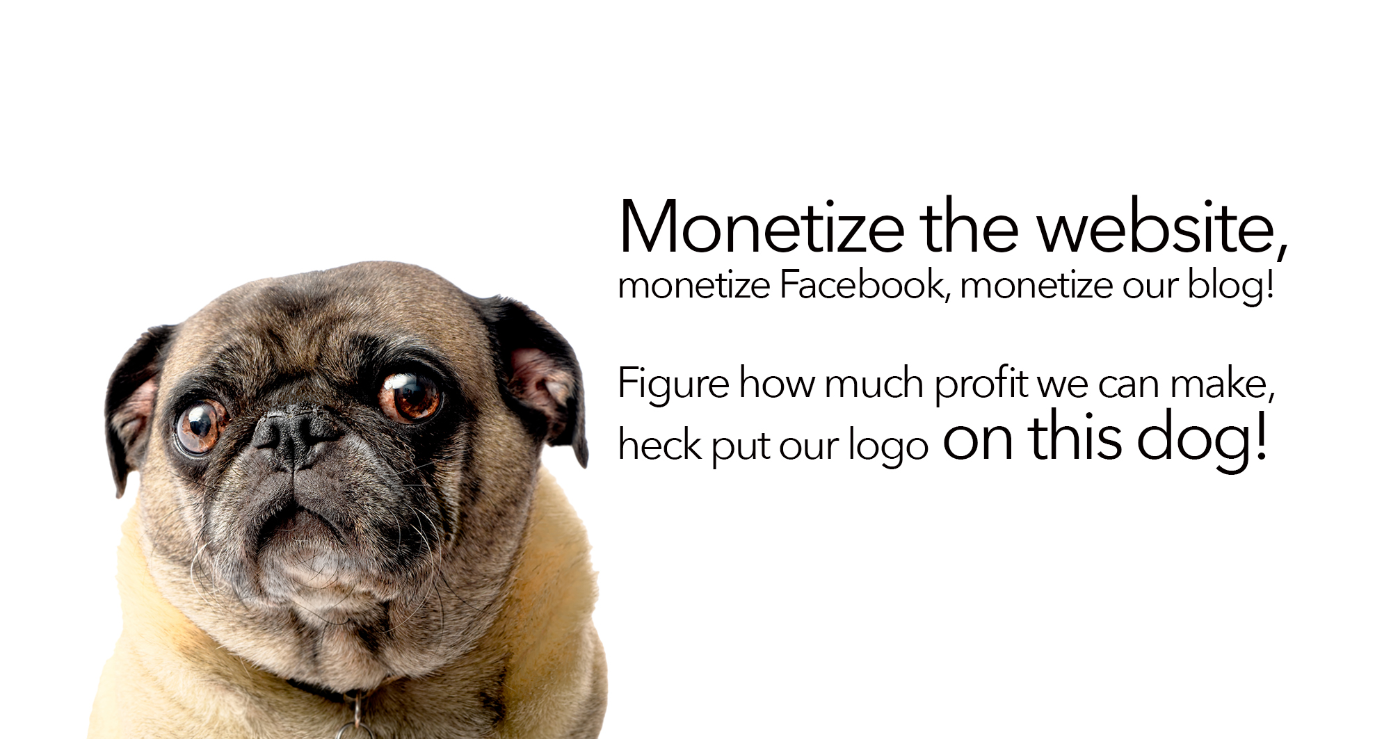 Monetize the website monetize the Facebook monetize our blog! Figure how much profit we can make