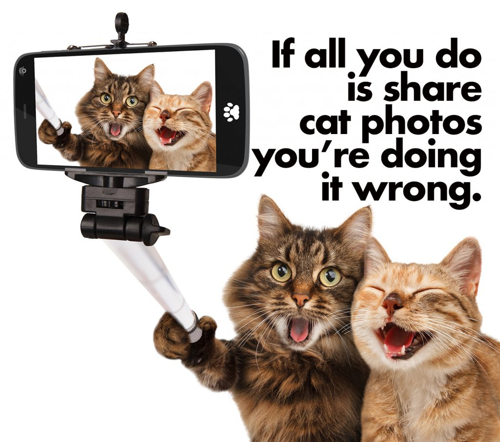 If all you do is share cat photos youre doing it wrong-2 copy