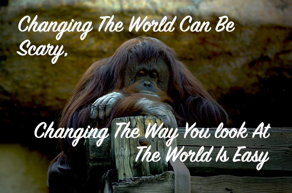 Changing The World Can Be scary, Changing The Way You See The World Is Easy