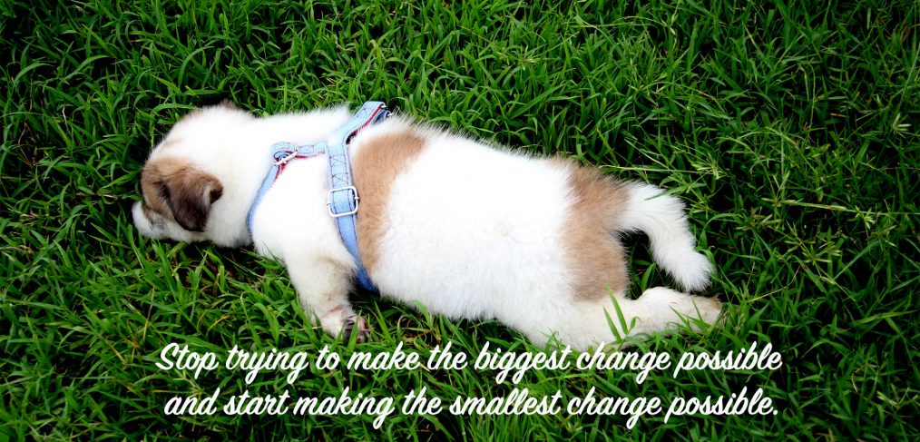 Stop trying to make the biggest change possible and start making the smallest change possible