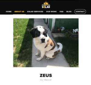 show your people on your website or dog
